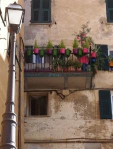 nice flowerpots on balcony
