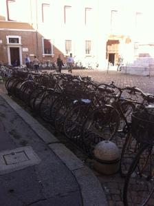 herd of bikes in Ravenna